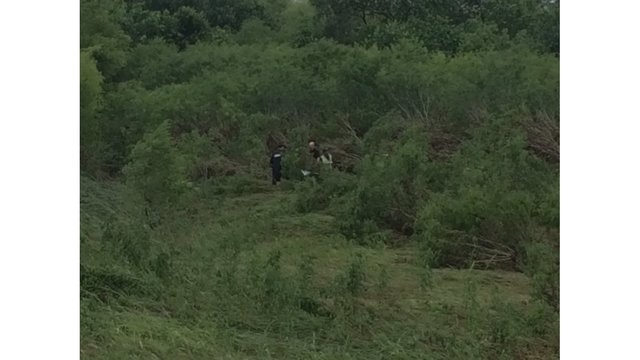 Officials searching for 2 people reported missing off FM 812 near COTA - Kylie McGivern_KXAN_291466