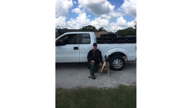 Fayette County Sheriff's Office and K9 Lobos seize 109 pounds of marijuana on Sept. 12, 2016_346831