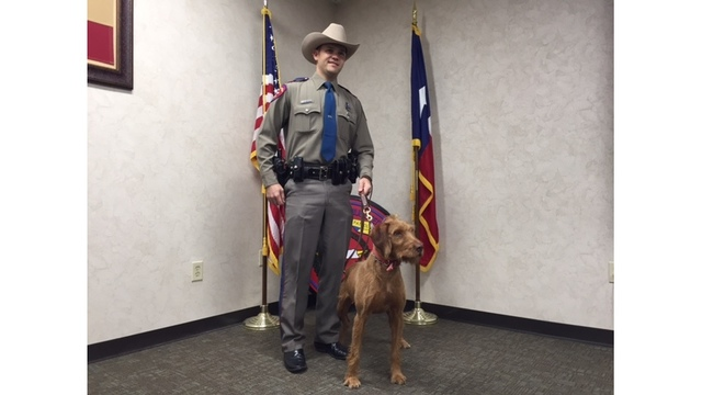 Texas Department of Public Safety canines graduate after 8 weeks of training (KXAN Photo_ Daniel Guerrero)_385478