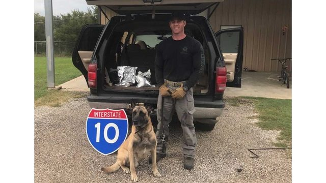K9 Lobos and Sgt. Randy Thumann with the Fayette County Sheriff's Office in a bust of $8 million worth of liquid meth_555186