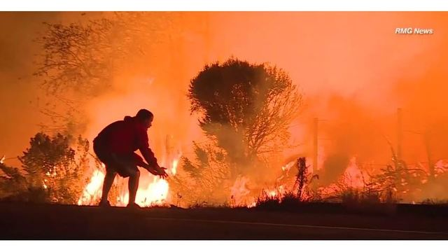 Animal lover helps save wild rabbit from California wildfire