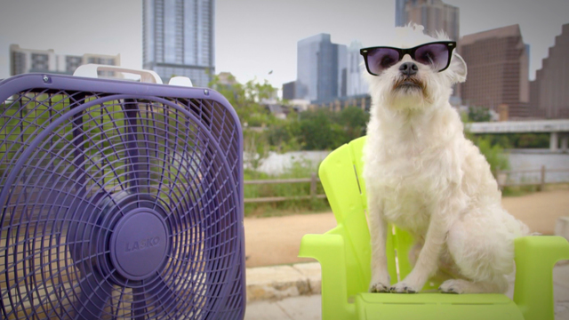 Help families beat the heat with our Summer Fan Drive!