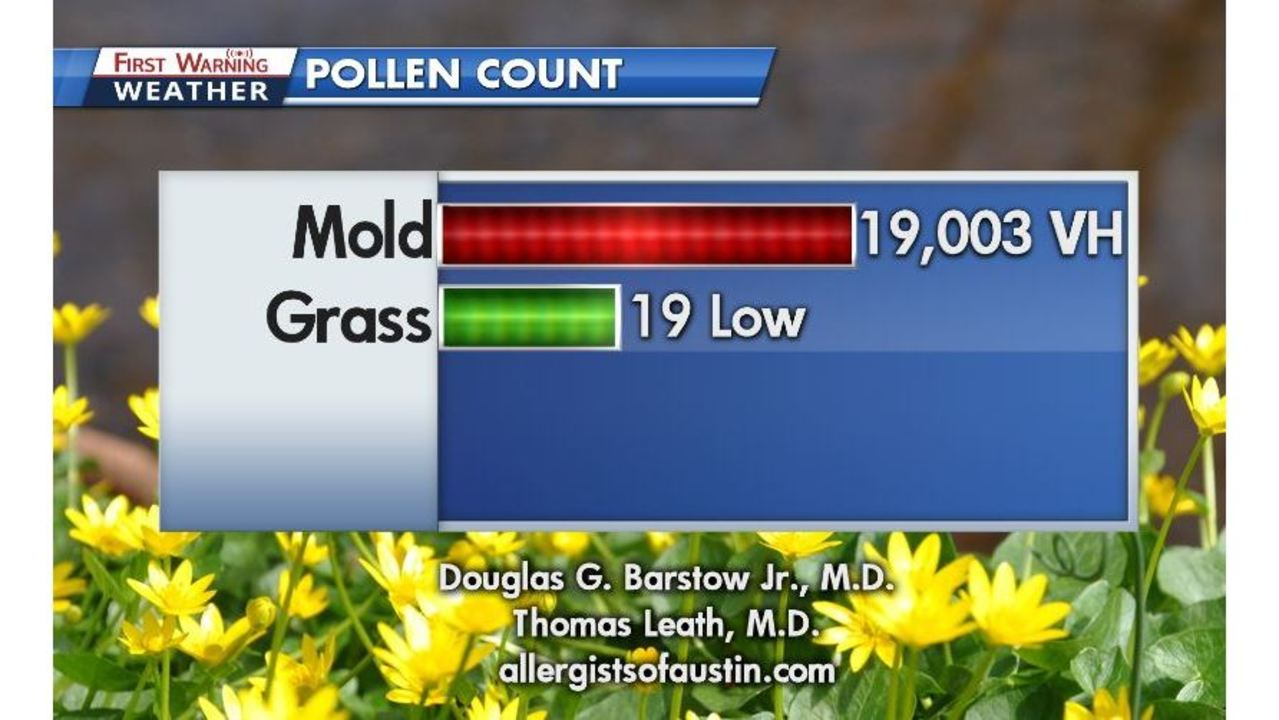 mold count explodes to near record level after tropical rains