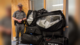 Officers in New York seize 200 pounds of marijuana in traffic stop